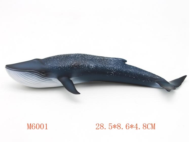 蓝鲸 M6001