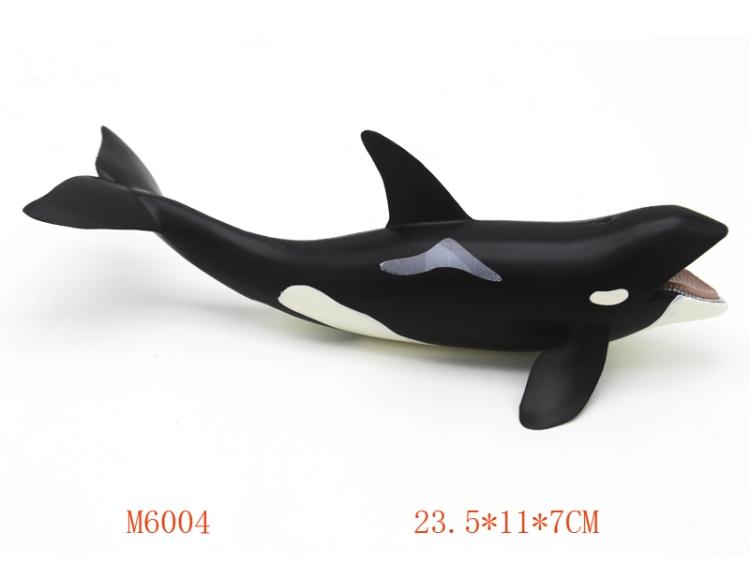 白鲸 M6004
